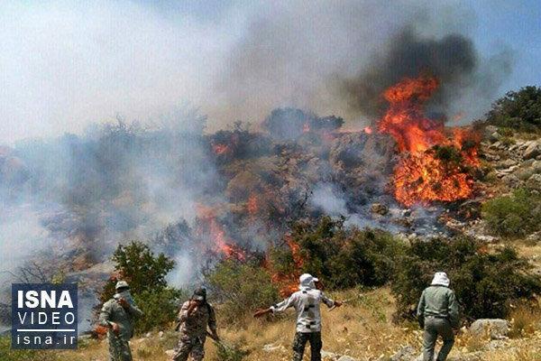 چرا آتش زدن پس چر مضر است؟