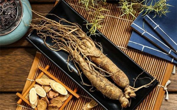 10 گیاه دارویی برای افزایش انرژی و تمرکز