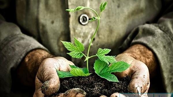 زمین میراث مشترک همه نسل هاست